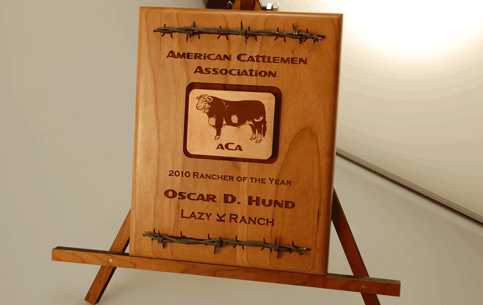 Wood and and barbed wire engraved award.