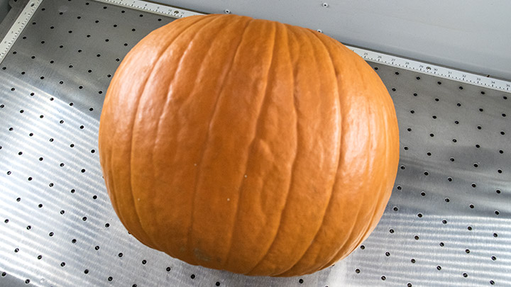 A pumpkin placed in the laser system